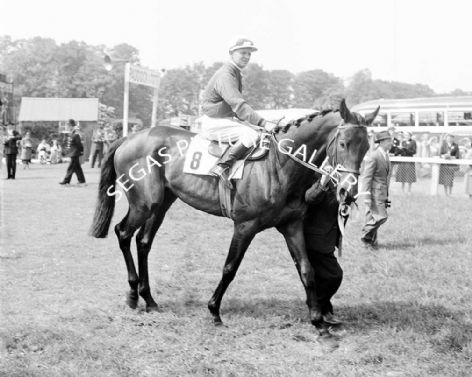 Racehorse Tippecanoe with Jockey E Britt